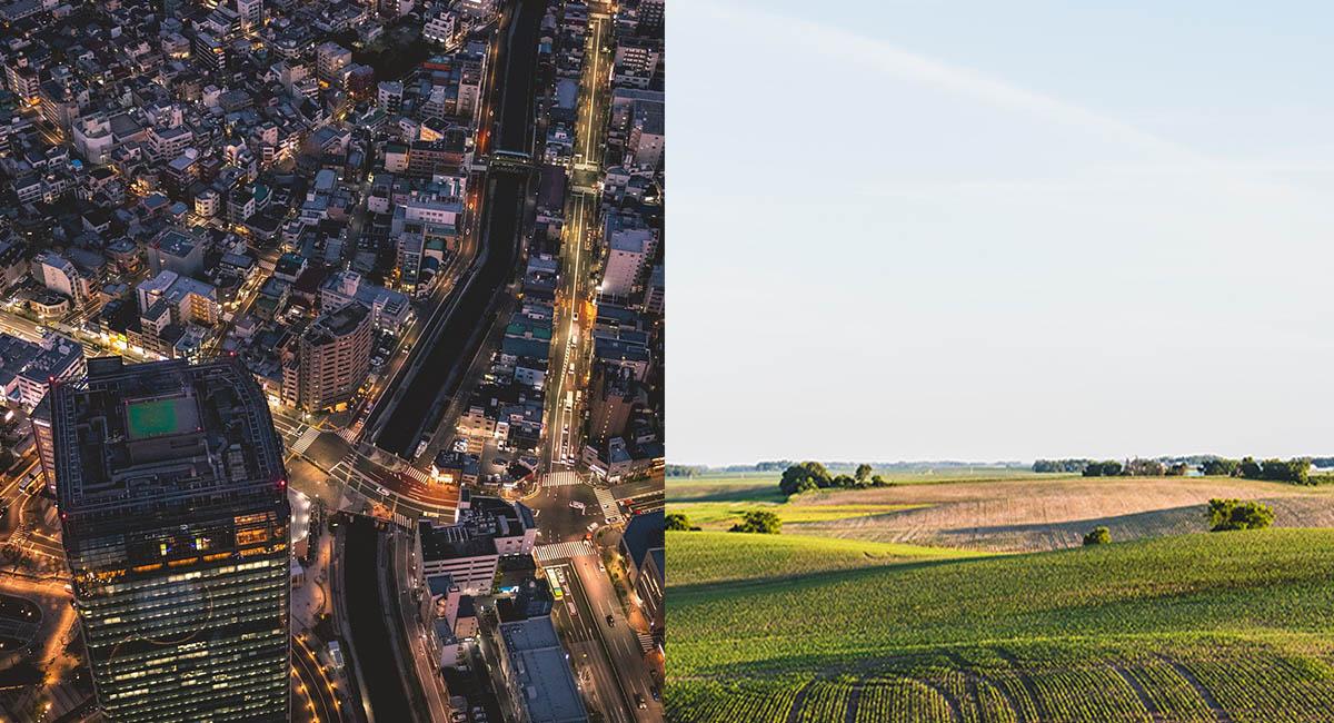 city at night on left; farm field on right