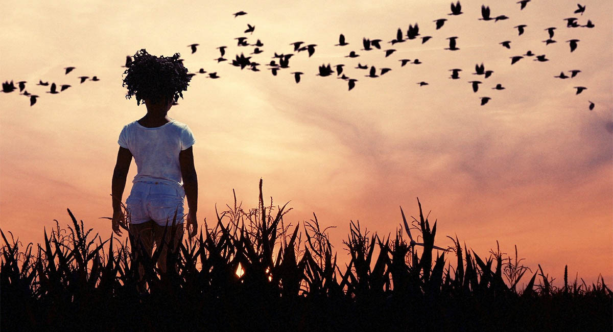 Little girl at sunset watching a flock of geese fly overhead