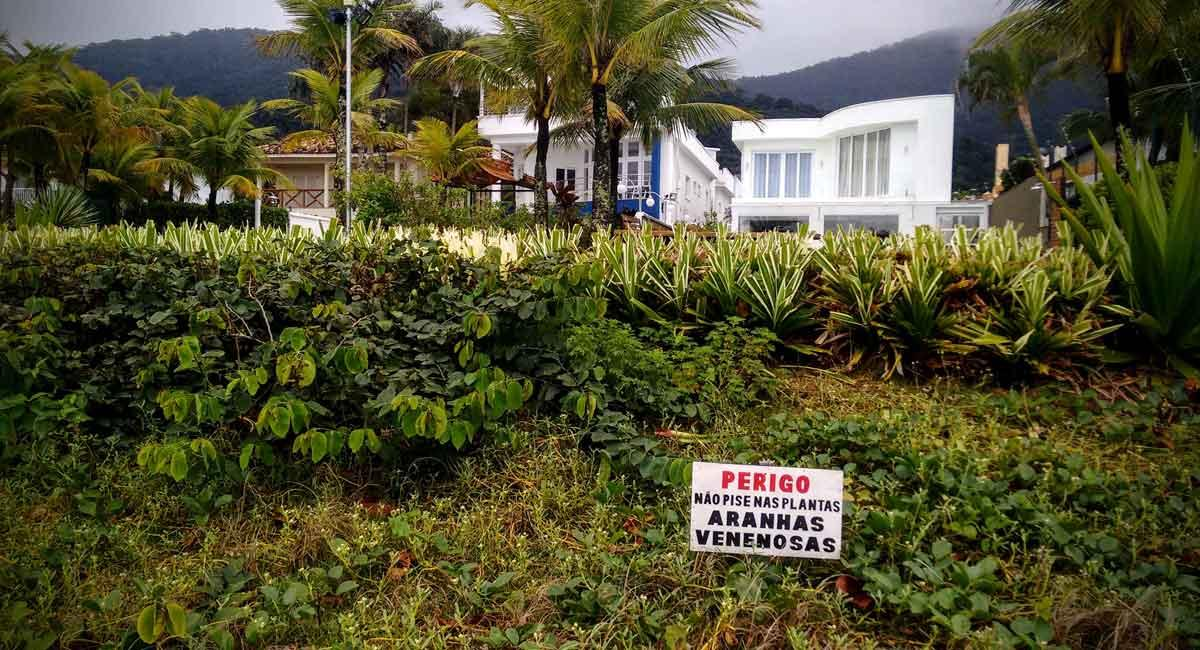 "A beach house with a sign in front saying, ""Danger! Don't step on the plants. Venomous spiders!"""