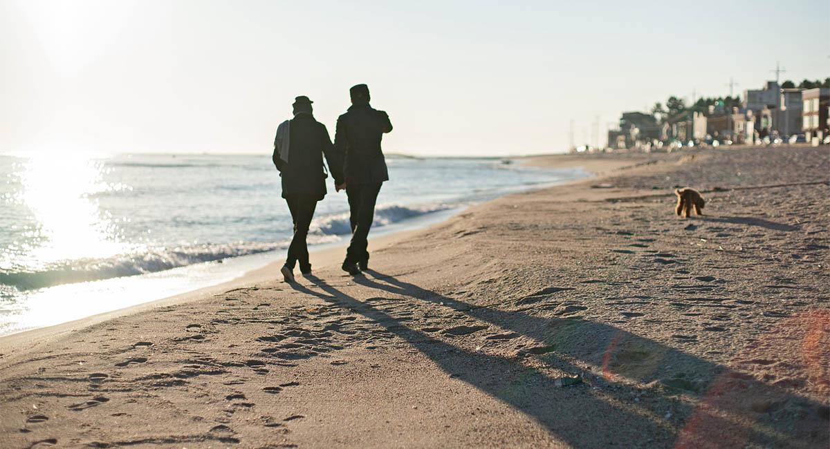 two people, beach, dog, shadows